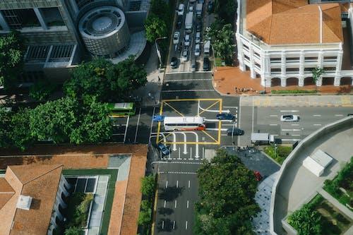 Foto d'estoc gratuïta de arquitectura, carrer, carretera, cotxes