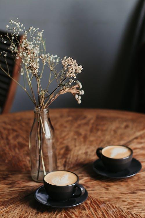 Fotobanka sbezplatnými fotkami na tému káva, kofeín, kvety, nápoj