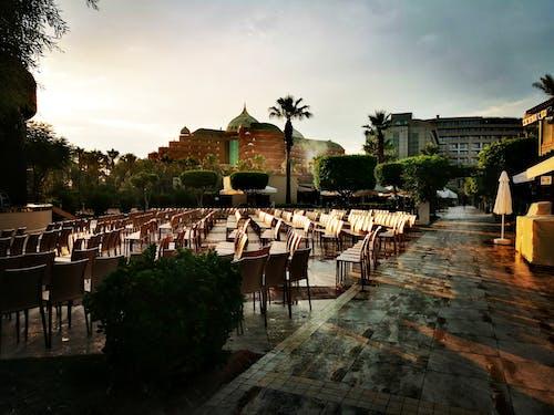 Foto d'estoc gratuïta de hotel, hotels, recepció de l'hotel