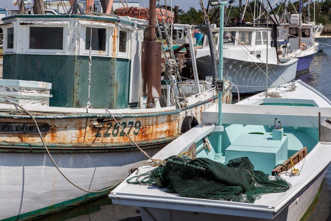 agbiopix, hidangan laut, kapal penangkap ikan tua