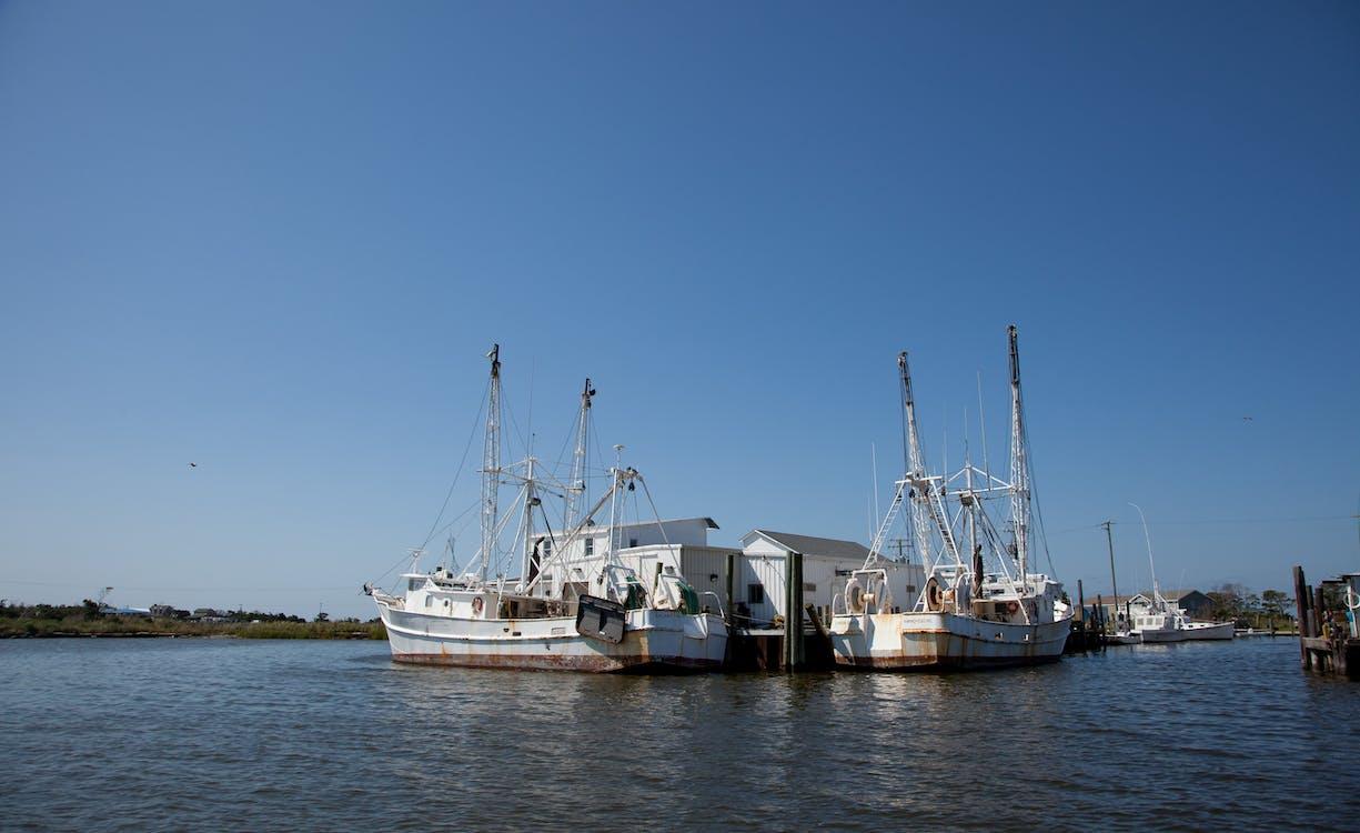agbiopix, akuakultur, penangkapan ikan komersial