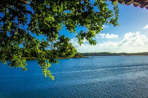 Gratis arkivbilde med blå himmel, blått vann, den blå lagune, fin utsikt