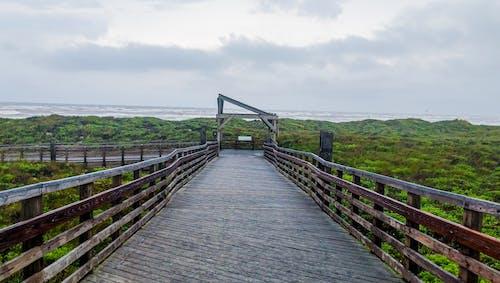Kostnadsfri bild av bro, brygga, dagsljus, gräs