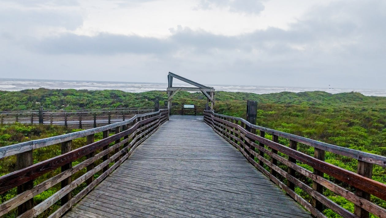 Architectural Photography of Black and Brown Wooden Bridge
