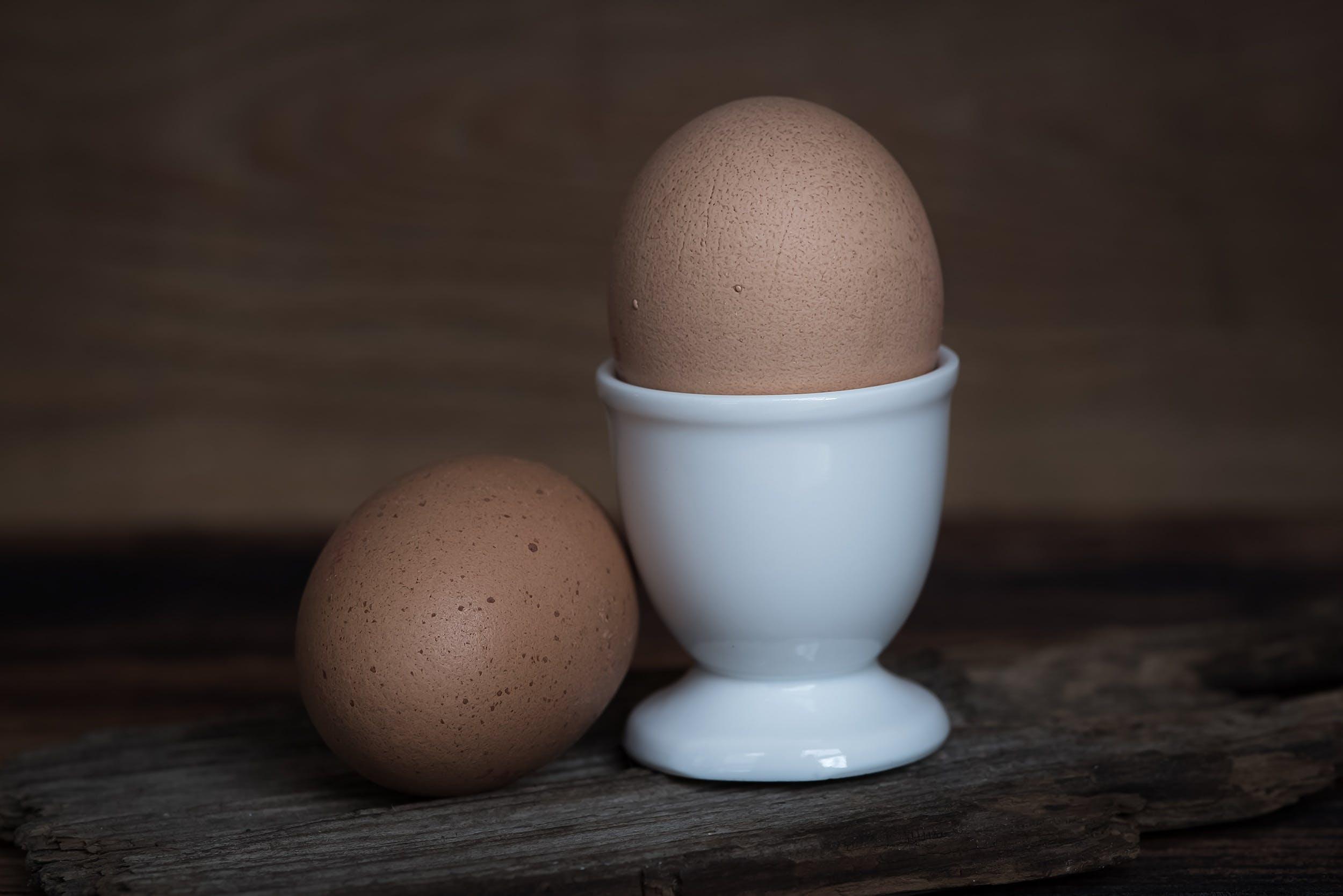 braun, eier, eierschale