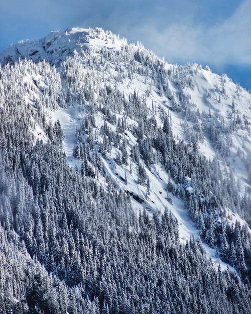 Snowy mountain with trees under sky in winter