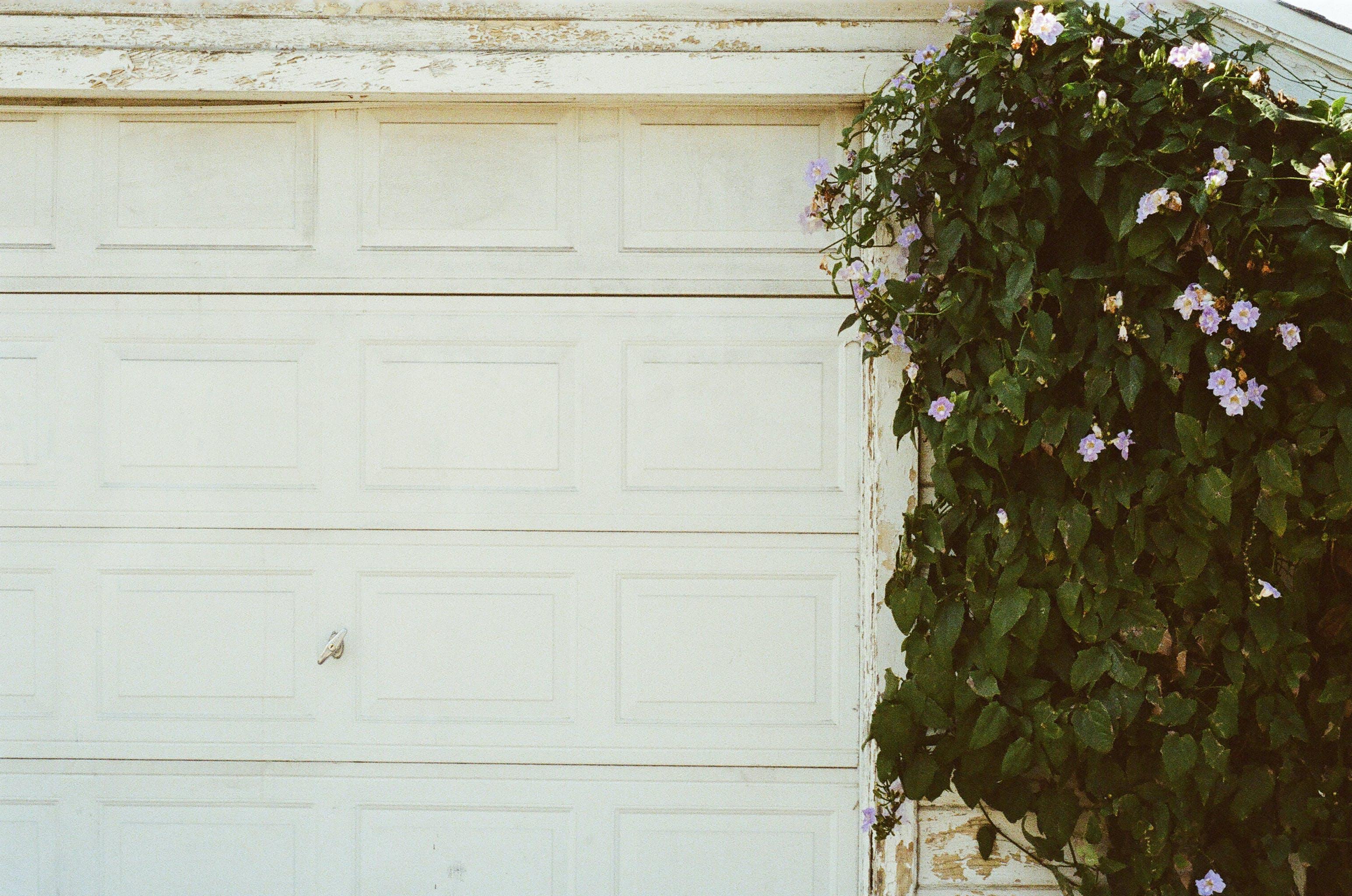closed, door, garage