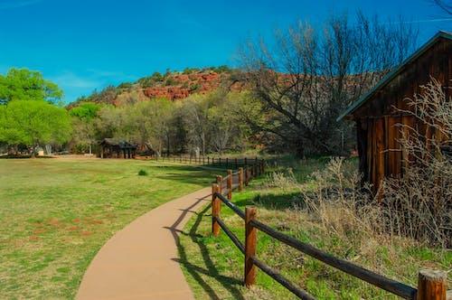 Kostenloses Stock Foto zu bauernhof, bäume, gras, landschaftlich