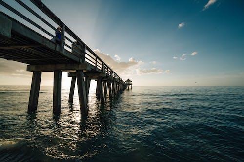 Základová fotografie zdarma na téma čeření, dok, dřevo, horizont