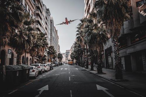 Imagine de stoc gratuită din aeronavă, arhitectură, autoturisme, avion