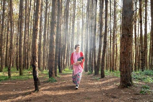 걷고 있는, 경치, 나르는, 나무 껍질의 무료 스톡 사진