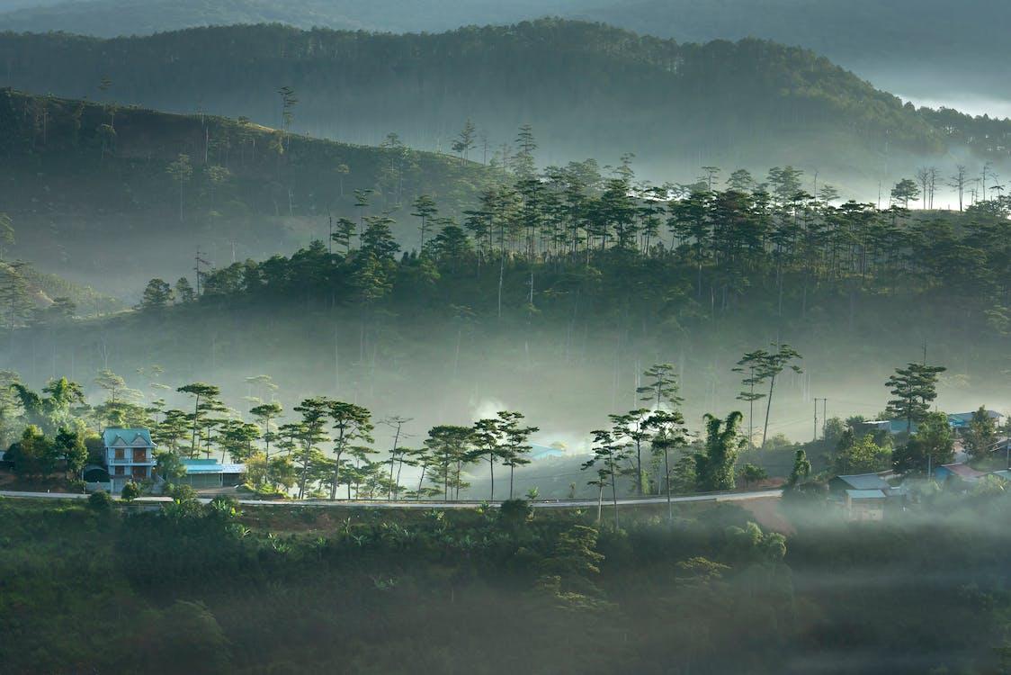 4k tapety, exteriéry, fotografia prírody