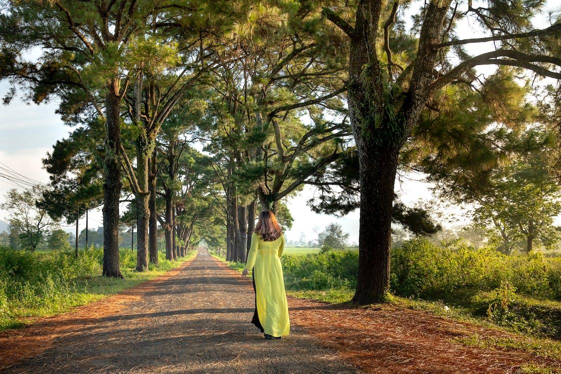 Woman Walking Between Trees