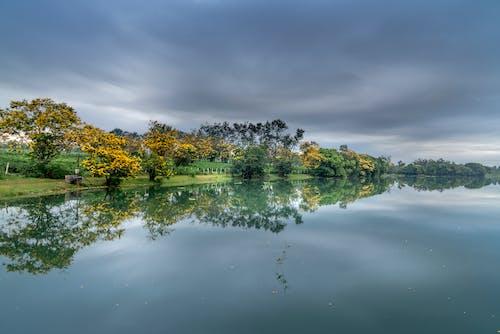 Ilmainen kuvapankkikuva tunnisteilla heijastus, järvi, puut, tyynet vedet