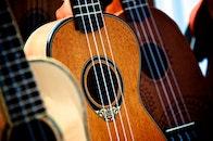 wood, music, musician