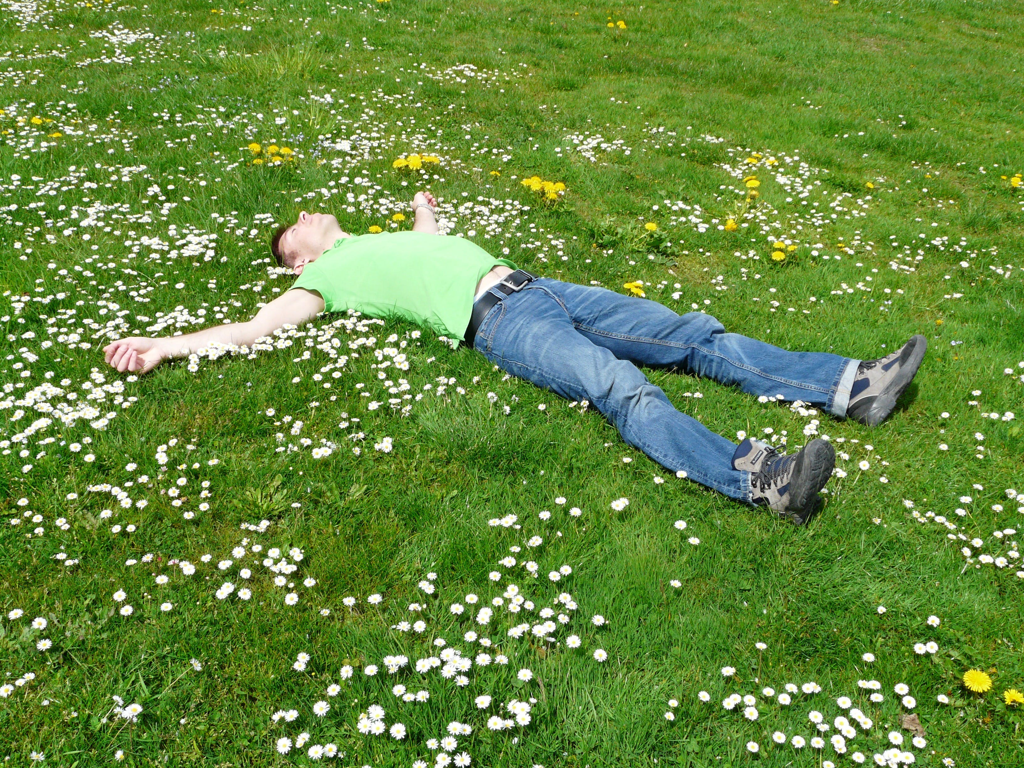 High Angle View of Lying Down on Grass