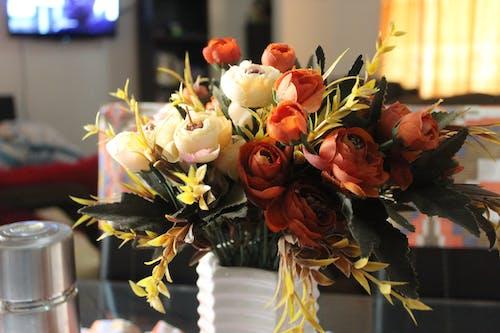 Ilmainen kuvapankkikuva tunnisteilla kimppu, koristelu, kukat, kukinta