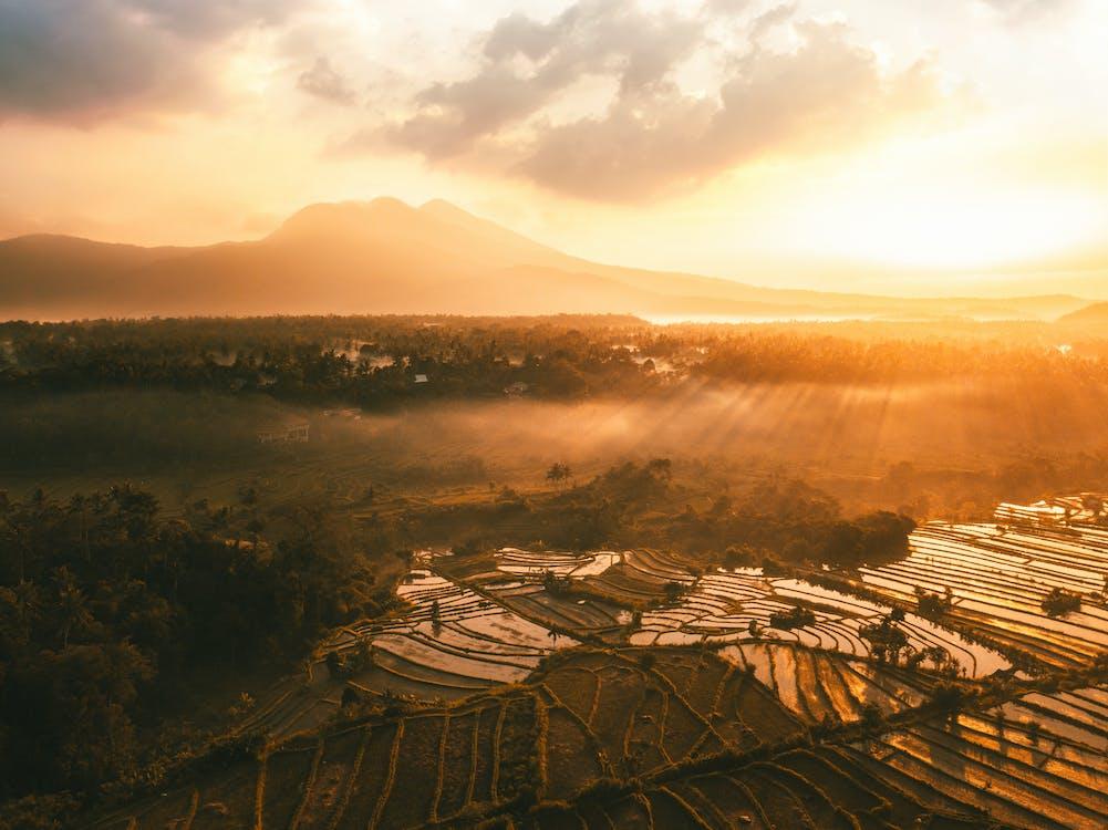 aerofotografia, agricultura, alvorecer