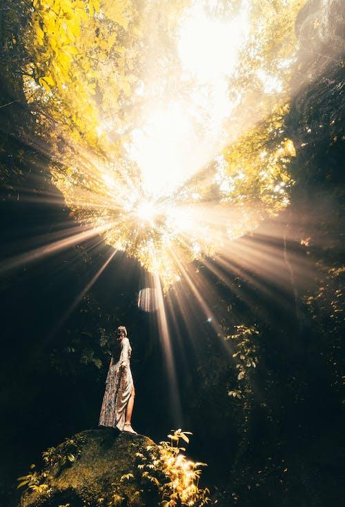 Fotobanka sbezplatnými fotkami na tému Bali, cestovať, človek, denné svetlo