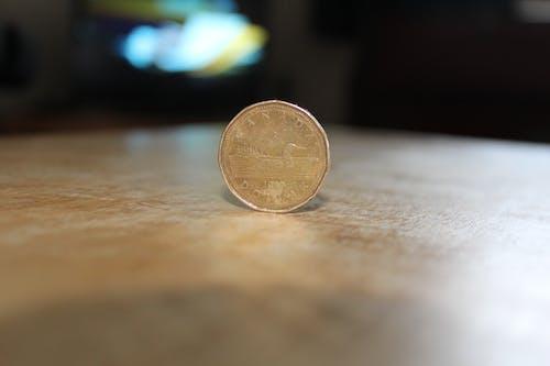 Foto d'estoc gratuïta de Canadà, diners, efectiu, loonie
