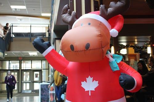 Foto d'estoc gratuïta de ant, Canadà, inflable, nadal