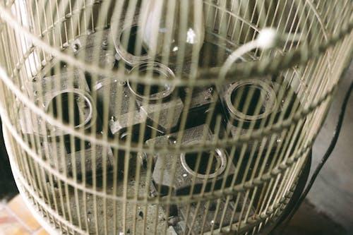 Cylindrical Birdcage