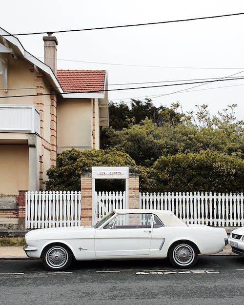 Безкоштовне стокове фото на тему «автомобіль, автомобільний, Вулиця, Денне світло»