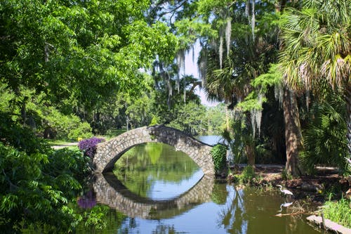 Foto stok gratis #water #reflection #bridge #trees #park
