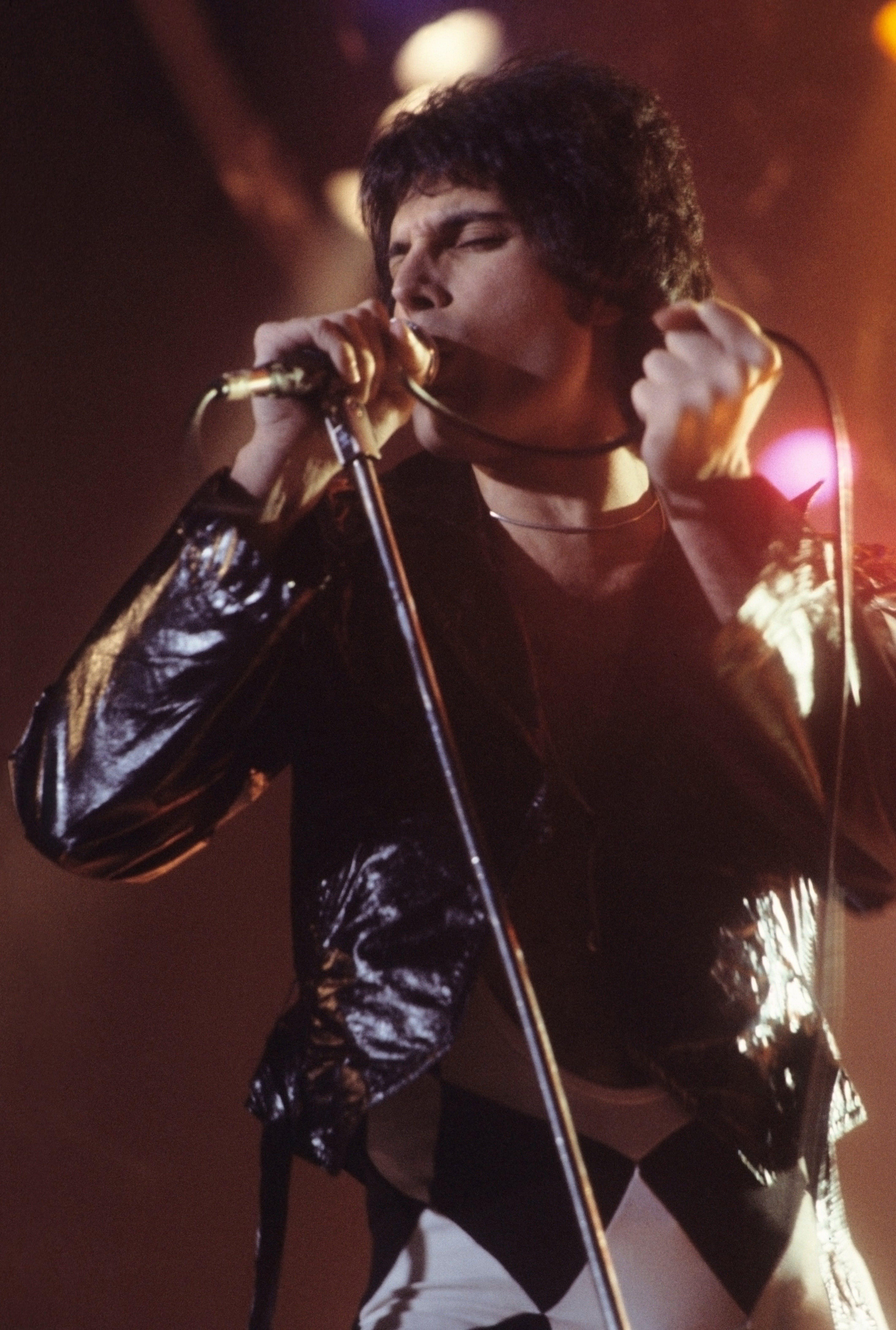 artist, celebrity, freddie mercury
