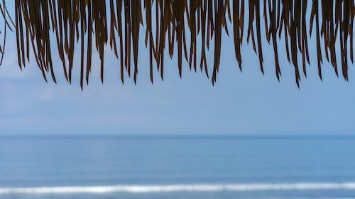Immagine gratuita di azzurro, morbido, oceano