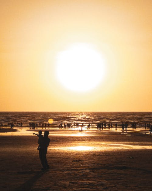 Silhouette Photography  of People on the Beach during Golden Hour