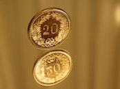 blur, reflection, money