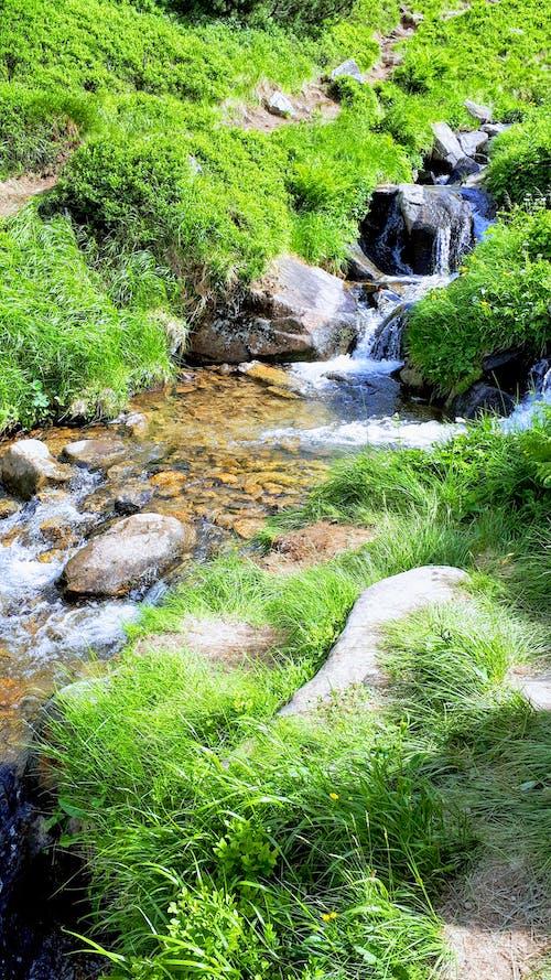 スカイライン, 山, 山岳, 山頂の無料の写真素材