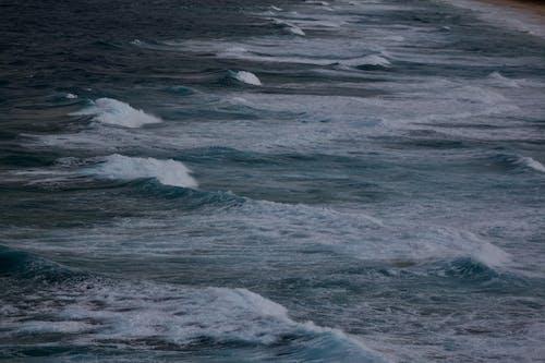 Gratis arkivbilde med bølger, hav