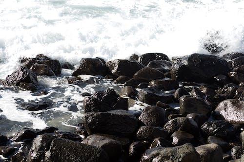 Gratis arkivbilde med bølger, hav, rock