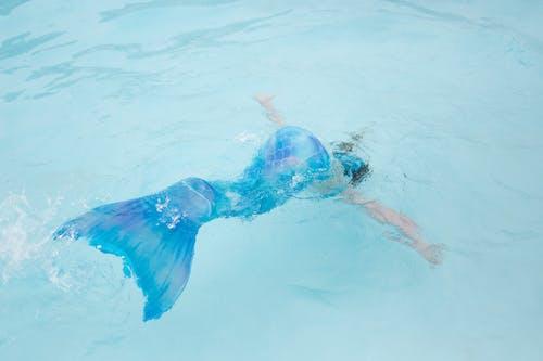 Foto stok gratis aktif, berenang, di bawah air, ekor