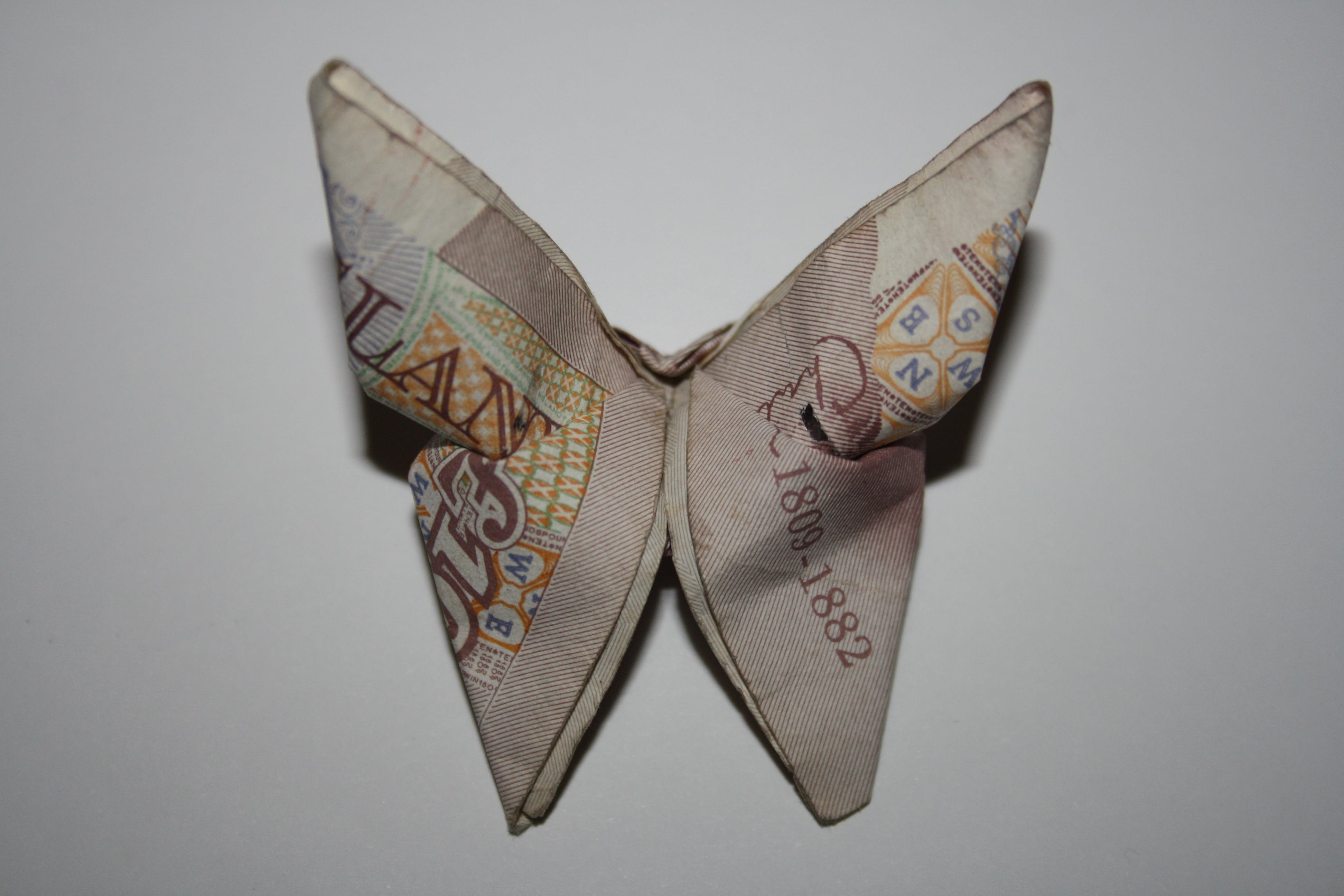 Free stock photo of notes, money, butterfly, finance