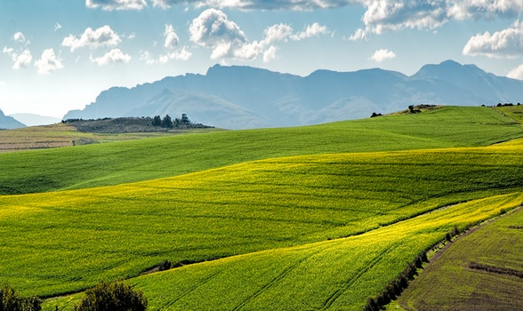 Free stock photo of landscape, nature, sky, field