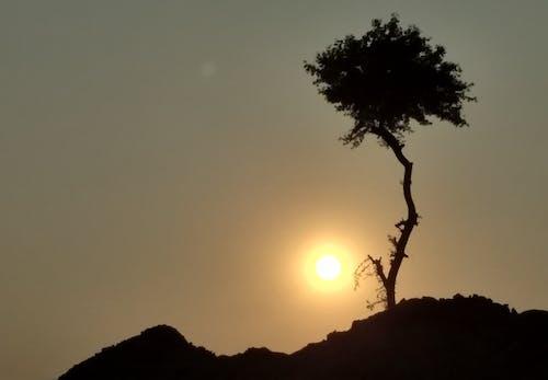 Foto stok gratis lansekap, lanskap, pemandangan