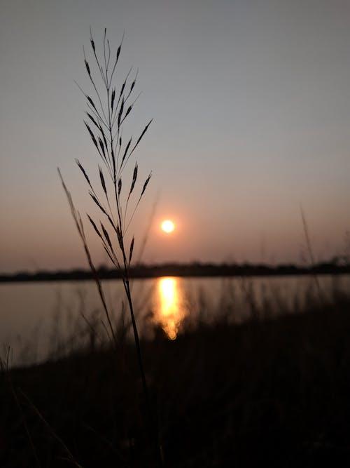 Gratis lagerfoto af landskab, solnedgang