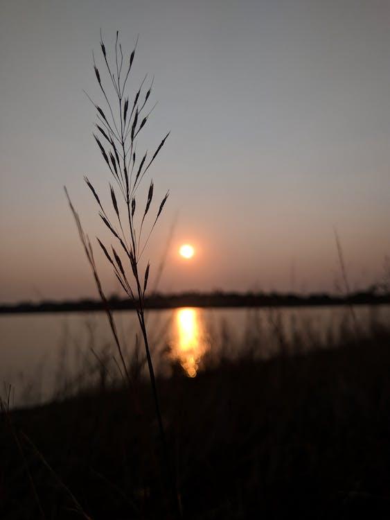 krajina, terén, západ slnka