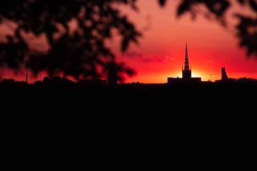 オレンジ色, オレンジ色の空, ゴールデンアワー, シティの無料の写真素材