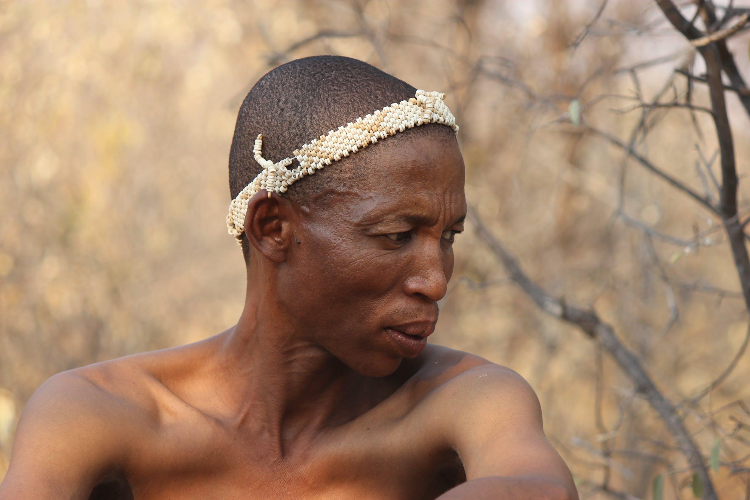 Free stock photo of africa, botswana, hunter, landscape