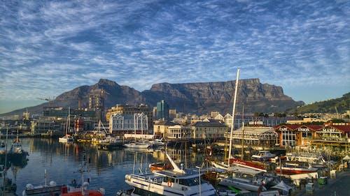 Photos gratuites de afrique du sud, baie, bateaux, bord de mer