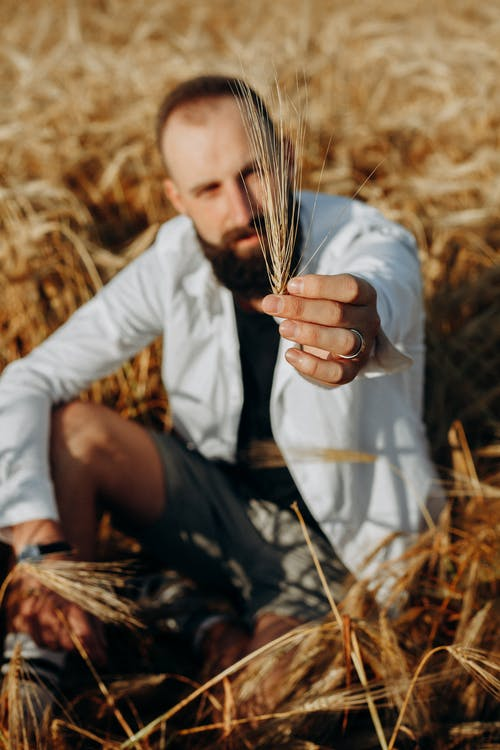 Photo of a Man Sitting Holding a Wheat