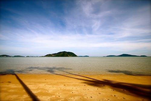 Imagine de stoc gratuită din faleză, palmier, phuket, rawai
