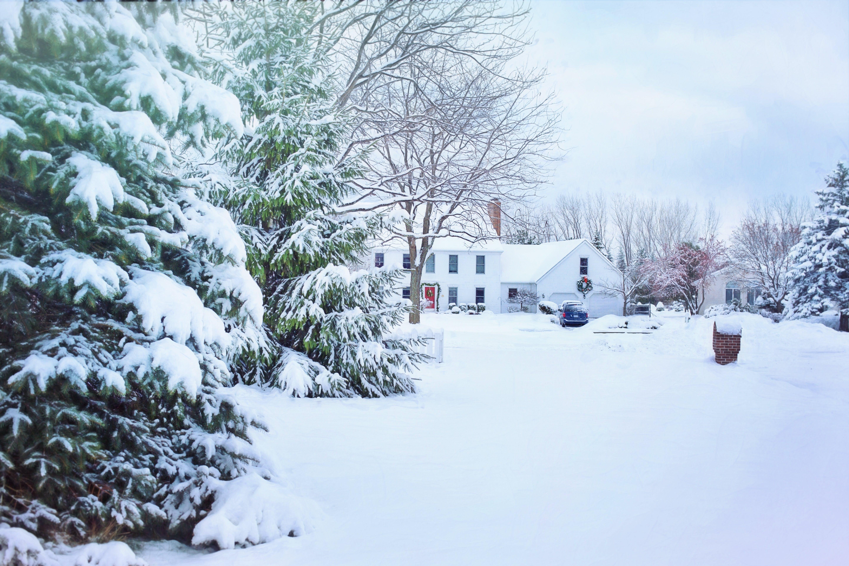 bolig, forkølelse, frossen