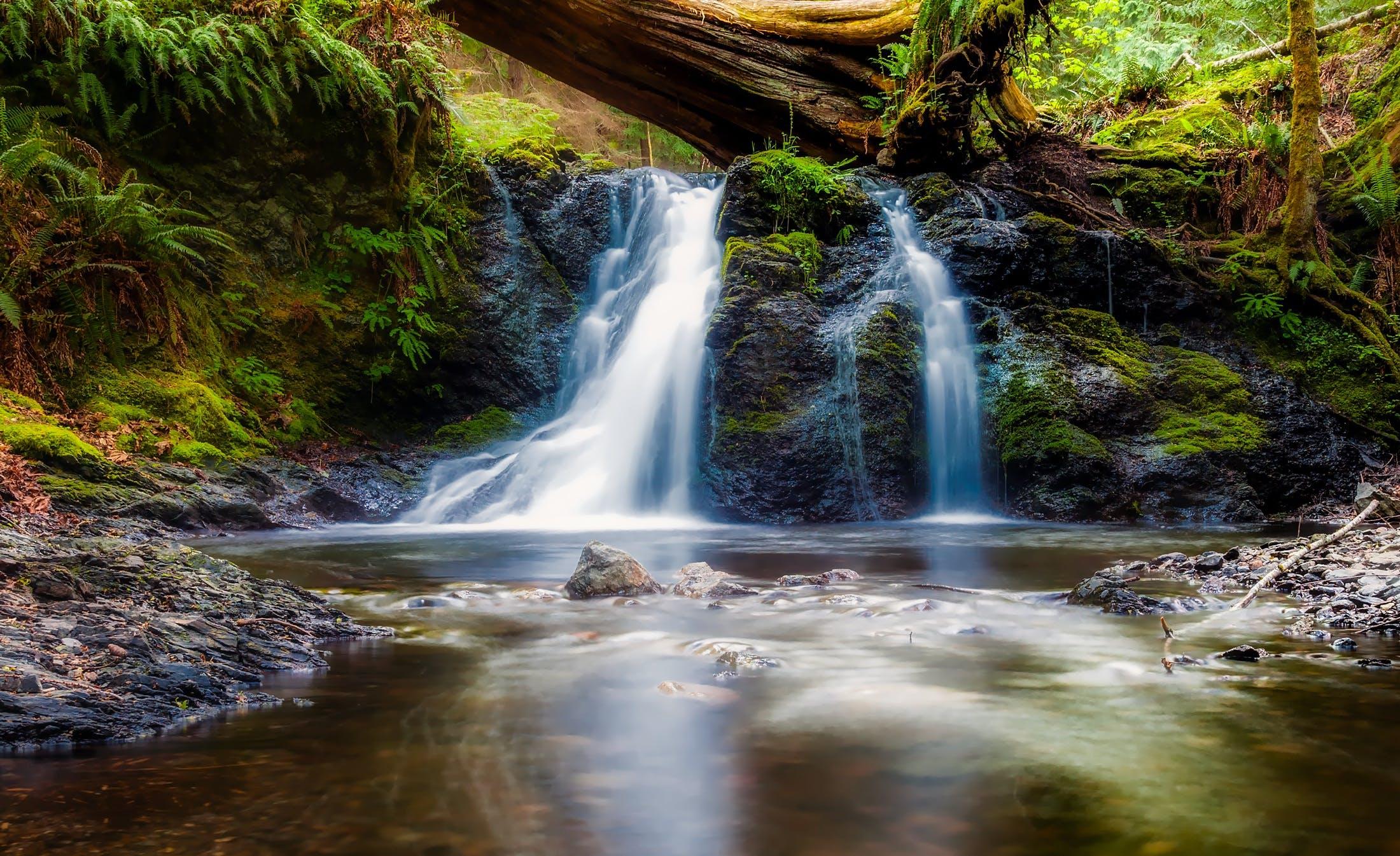 beautiful, brook, cascade