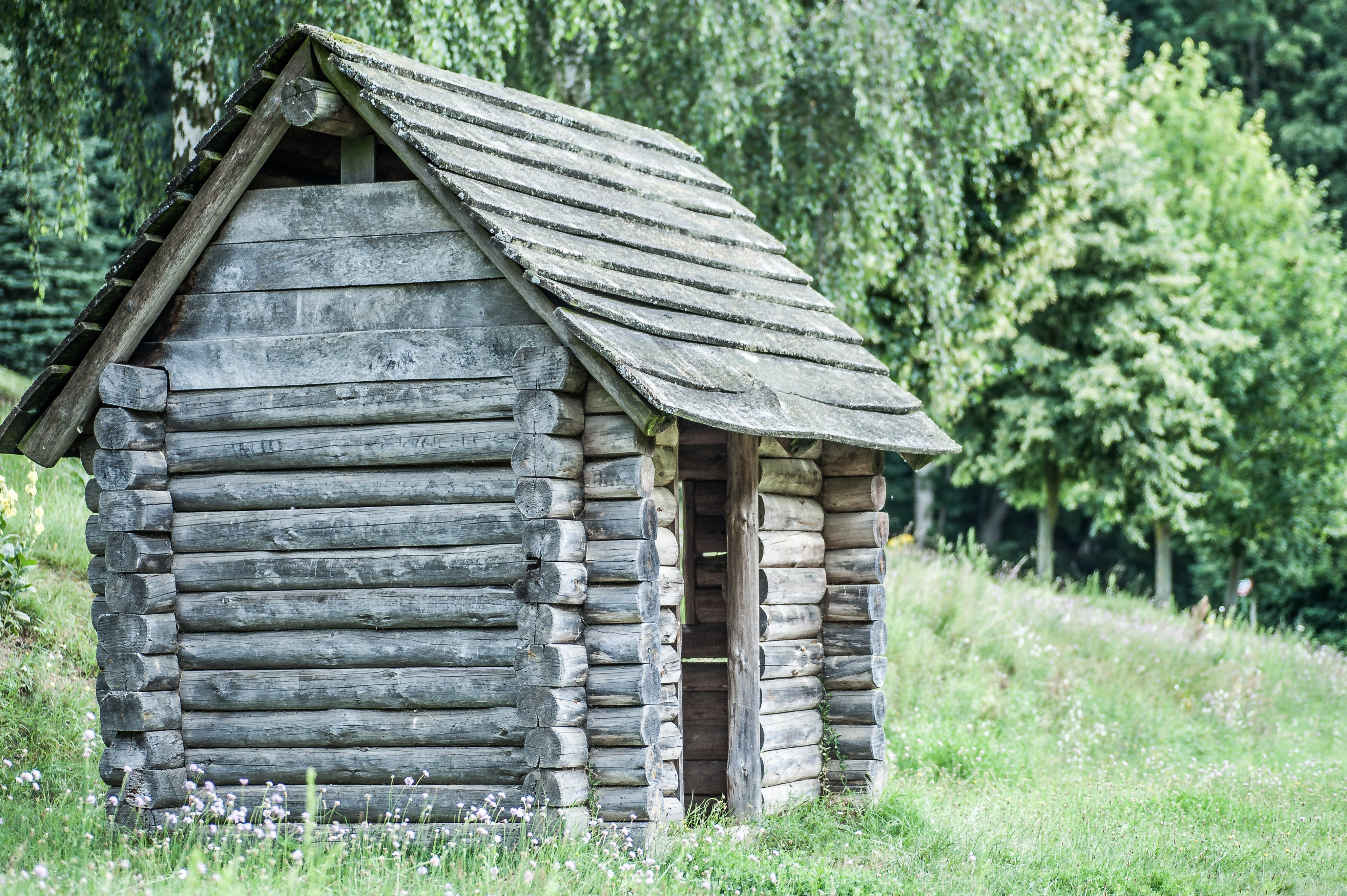 Brown Wooden Shed Near Trees