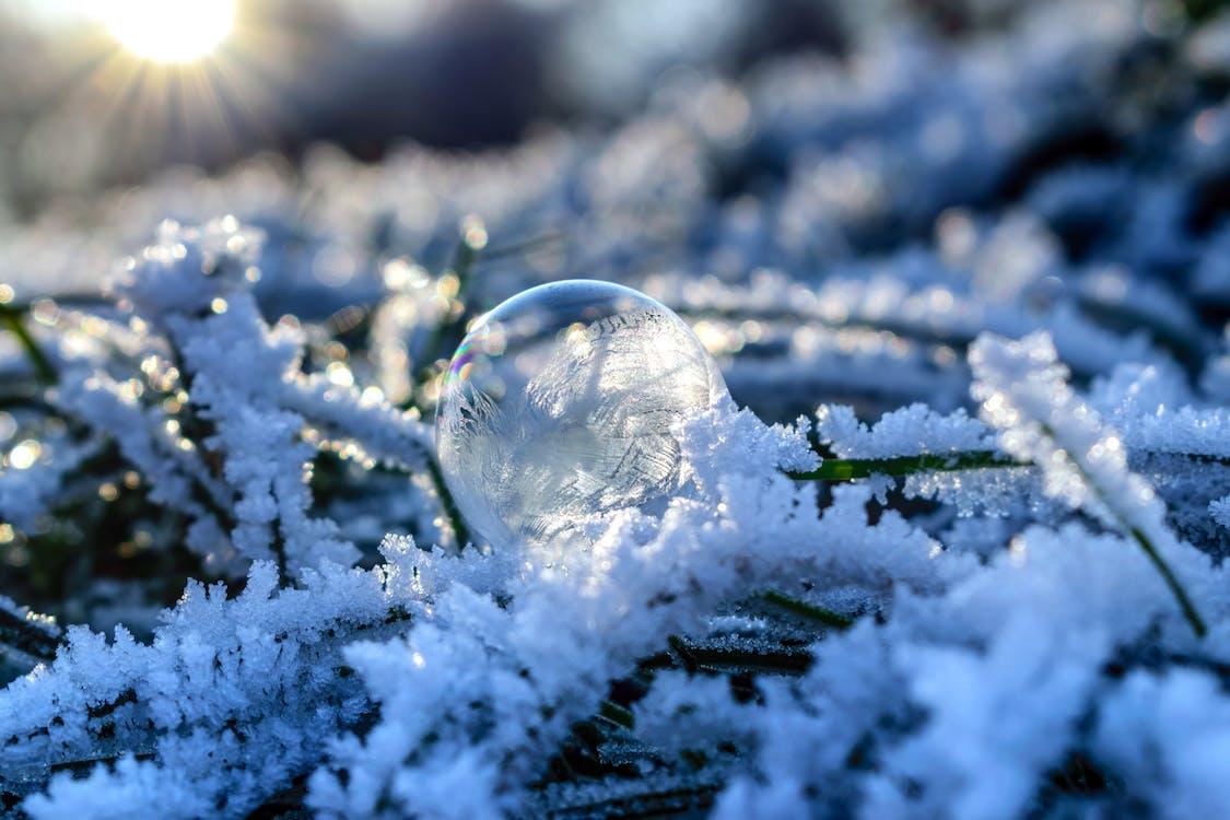 anotimp, congelat, de gheață